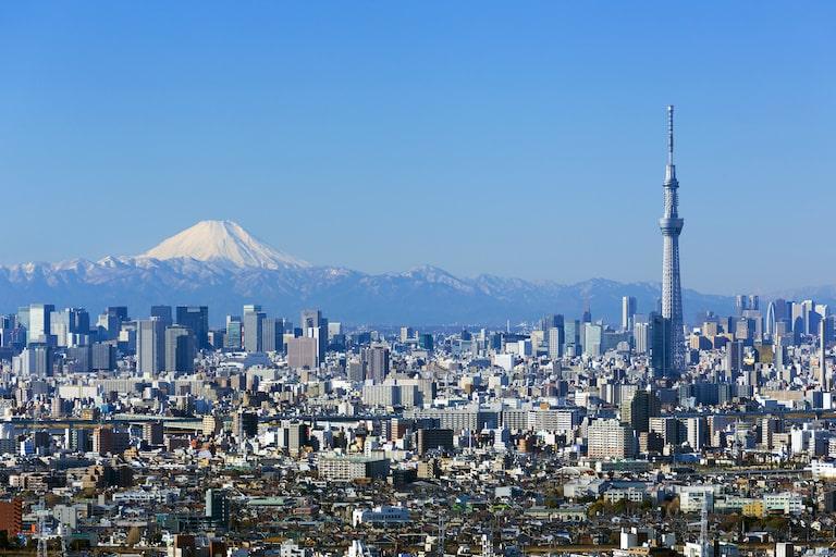 東京及び関東にある医学部の入試倍率を徹底比較